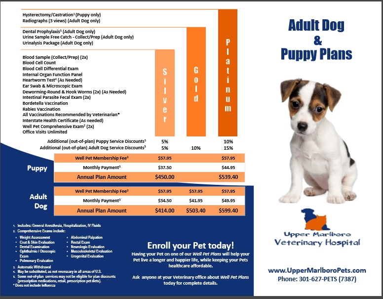 Puppy and adult dog wellness plan brochure